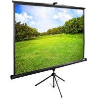 Экран для проектора Cactus CS-PSTE-200X150-BK