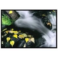 Экран для проектора Draper Clarion 02402029