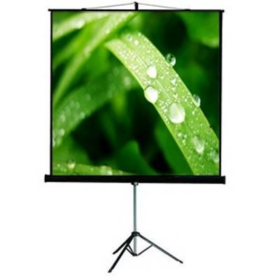 экран для проектора Viewscreen Clamp Pro TCP-1107