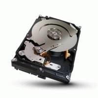 Жесткий диск Seagate ST1000VX000