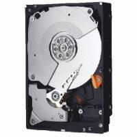 Жесткий диск WD WD3000FYYZ