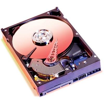 жесткий диск IBM 40K1028