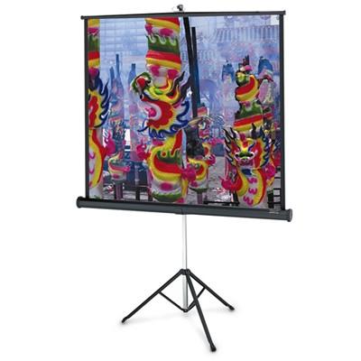 экран для проектора Projecta Professional 10430107